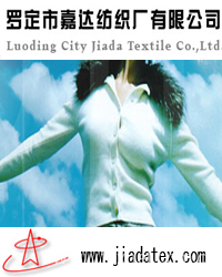 Guangdong Luoding Jiada Textile Co., Ltd.