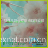 RPET麂皮绒面料 RPET面料