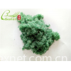 Phosus Removal ion exchange resin for water