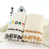 microfiber towel supplier