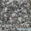 Low Price China G664 Granite