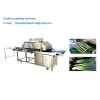 Scallion peeling machine Green Onions peeling machine