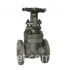 1 Inch Gate Valve, A105N, API 602, CL150, Solid Wedge