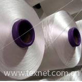 Bright Polyester DTY (Flat Section)