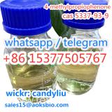 China Factory Supply CAS 5337-93-9 4-Methylpropiophenone Professional Supplier