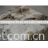micro velour blanket(coral fleece fabric)100%polyester