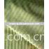 stripe velboa/stripe warp knitted fabric /stripe polyester fabric/stripe velvet