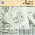 flower pattern polyester spandex mesh fabric