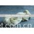 silk cotton blended yarn