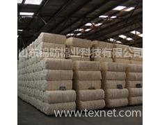 津国以及非洲棉花资源 点击查看大图